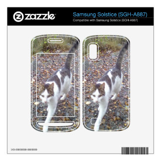 Walking cat samsung solstice decal
