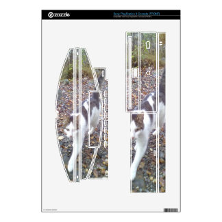 Walking cat skin for PS3 console