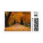 Walking Down Autumn's Memory Lane Stamp