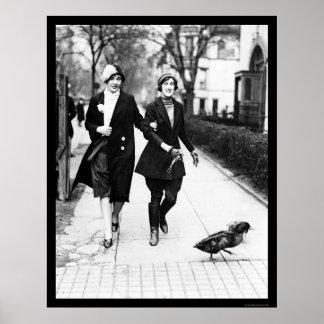 Walking Ducks in Washington, DC 1926 Poster