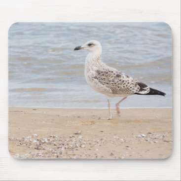 Walking gull mouse pad