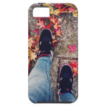 Walking in the park iPhone 5 covers