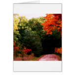 Walking Into Fall Greeting Cards
