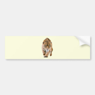 Walking Jaguar Eyes Bumper Sticker