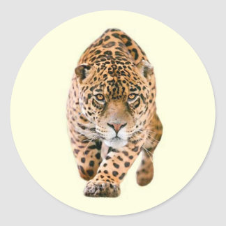 Walking Jaguar Eyes Classic Round Sticker