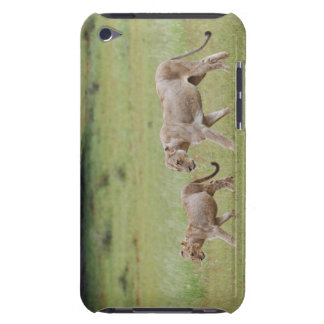 walking lioness with cubs, lion, Panthera leo, Case-Mate iPod Touch Case