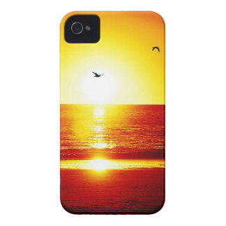 Walking on the Beach at Sunset With Bird iPhone 4 Cases