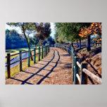 Walking Path Print