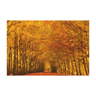 Walking path through autumn forest canvas