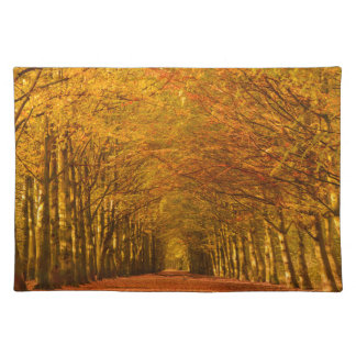Walking path through the forest in autumn placemat