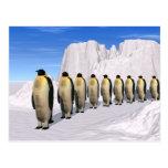 Walking Penguins Postcard