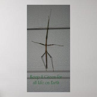 Walking Stick - Green Poster