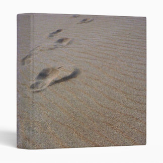 Walking the Beach Binder