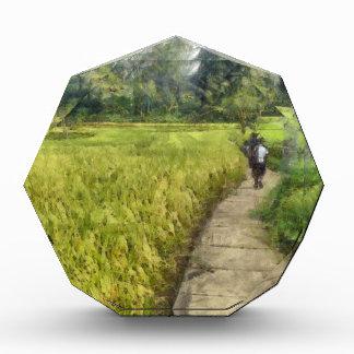 Walking through some fields acrylic award