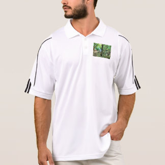 Walking through the forest polo