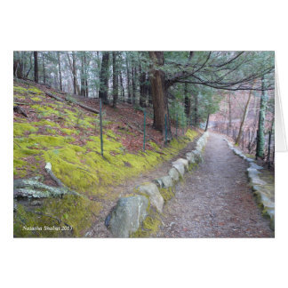 Walking trail at Walden Pond, greeting card
