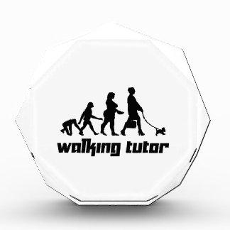 Walking Tutor Acrylic Award