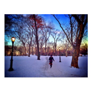 Walking Under A Winter Sunset Postcard