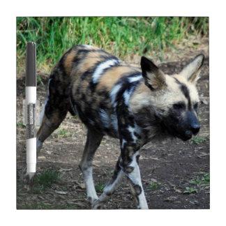 Walking Wild Dog Dry Erase Boards