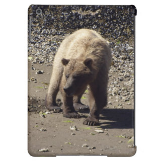 Walking Wild Grizzly Bear Wildlife Photo Case For iPad Air