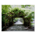 Walkway arbor in Central Park, NYC Posters