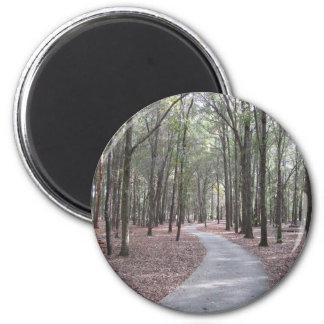 Walkway at Sholom Park Magnet