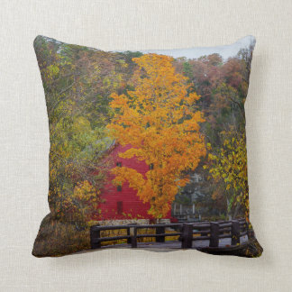 Walkway Bridge To Alley Mill Throw Pillow