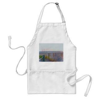 walkway florida beach dune sunrise adult apron