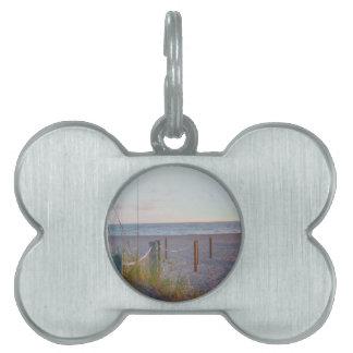 walkway florida beach dune sunrise pet tag
