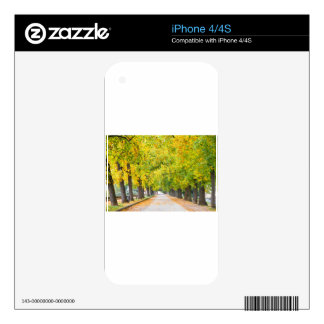 Walkway full of trees skin for the iPhone 4S