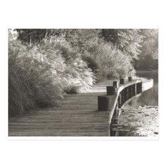 walkway.jpg postcard