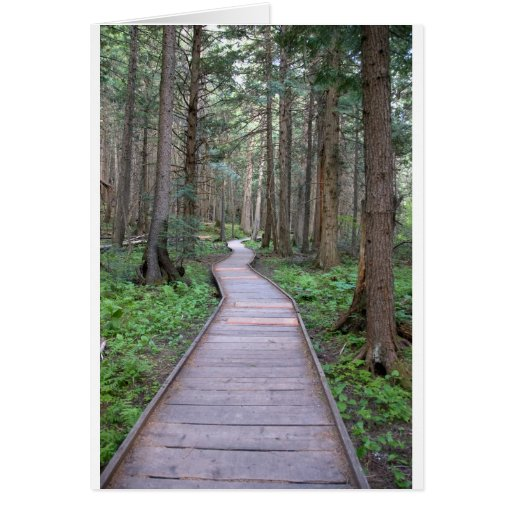 Walkway through woods card