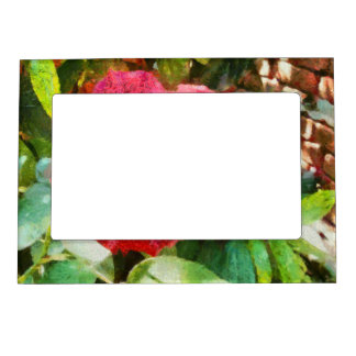 Wall and red rose magnetic photo frame