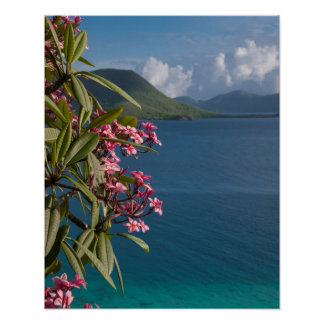 Wall Art: Leinster Bay from Annaberg Ruins Poster