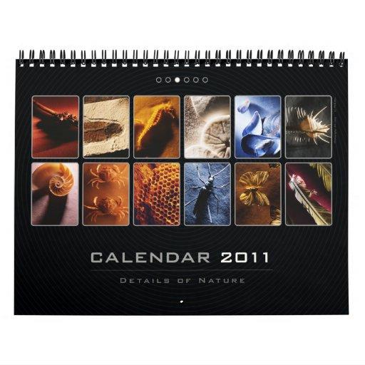 Wall Calendar 2011 - Details of Nature (3)