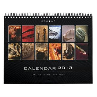 Wall Calendar 2013 - Details of Nature (4)