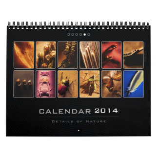 Wall Calendar 2014 - Details of Nature (5)
