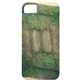 Wall iPhone 5 Case