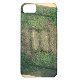 Wall iPhone 5C Cases