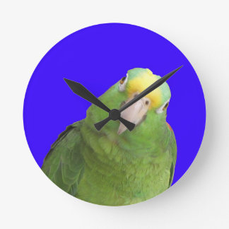 Wall clock with an Amazon parrot.