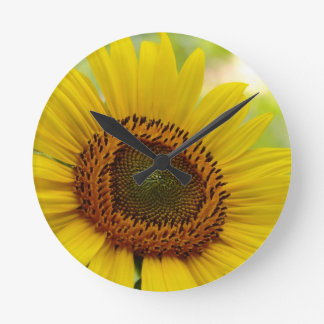 Wall Clock with sunflower