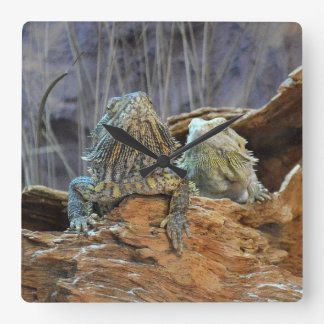 Wall Clock  with two curious lizards