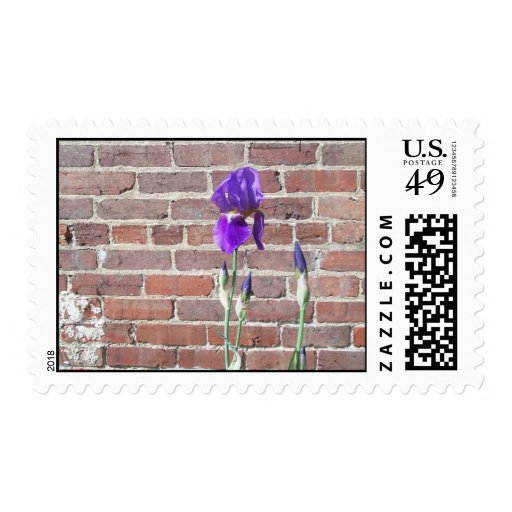 Wall Flower Stamp