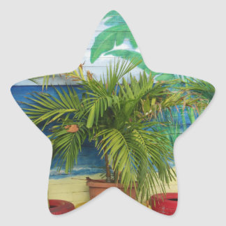 """Wall of Colors """"St. Maarten"""" Star Sticker"""