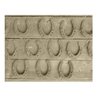 Wall of Horse Shoes Postcard