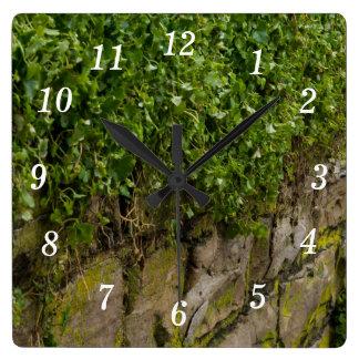 Wall Of Ivy Square Wall Clock