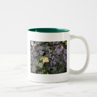 Wall of Ivy Two-Tone Coffee Mug