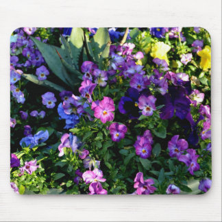 Wall of Pansies Mouse Pad