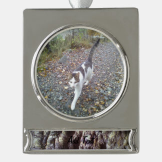 wall of stone silver plated banner ornament