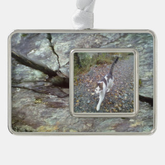 wall of stone silver plated framed ornament